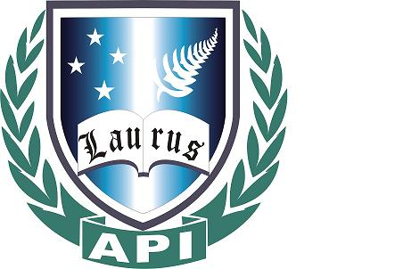 API Institute of Education logo